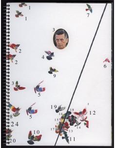 Ricardo Cases | Paloma al aire