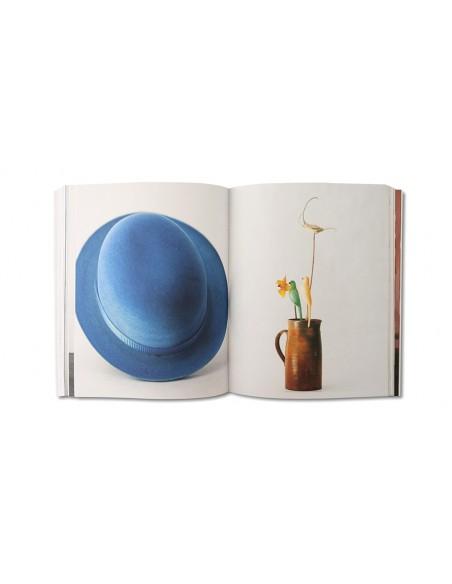 The Miró Eye