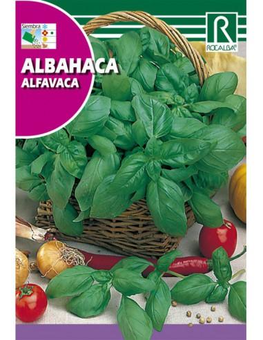 ROCALBA SEMILLAS ALBAHACA