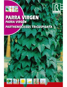 ROCALBA SEMILLAS PARRA VIRGEN