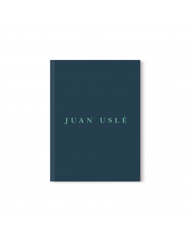 Cuaderno de artista: Juan Uslé
