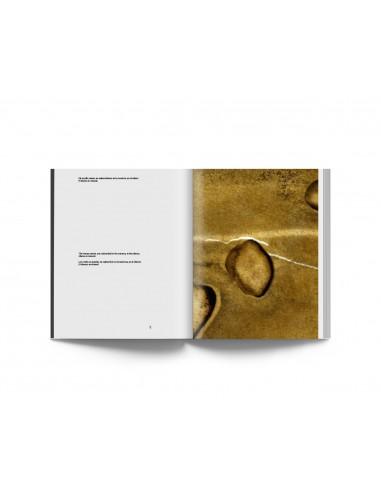 Joan Fontcuberta, Poemas del Alquimista