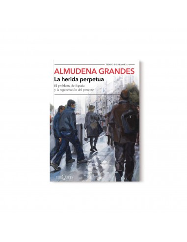 Almudena Grandes, La herida perpetua