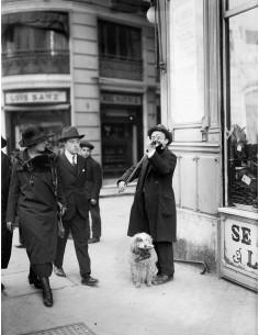 Violinista con perro 1933