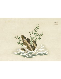 Lámina Botánico Asia 1