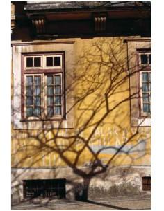 Coimbra, 1999