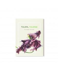 Tulipa Tulipae, El tulipán...