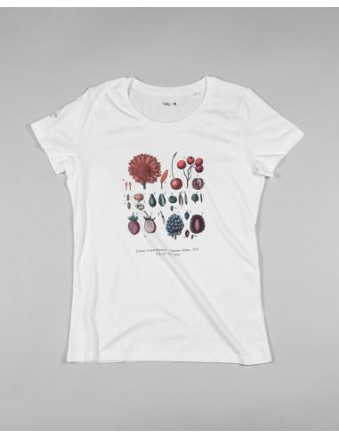 Camiseta mujer Clasificacion Van Berkhey