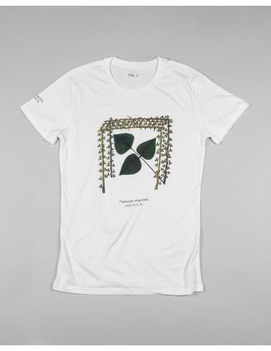 Camiseta unisex mutis Psophocarpus...