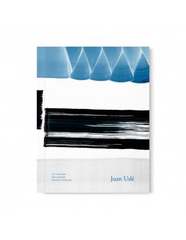 Juan Uslé, Ojo y paisaje