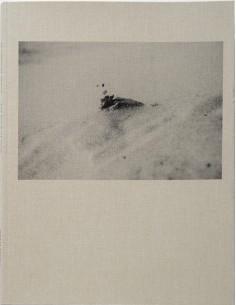 Maria Primo, El libro de arena