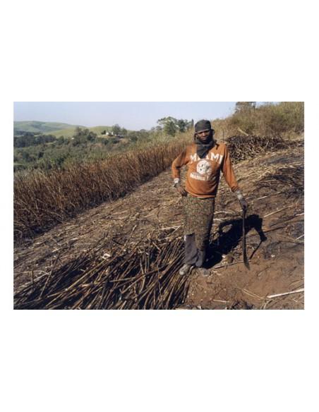 Zwelwthu Mthethwa