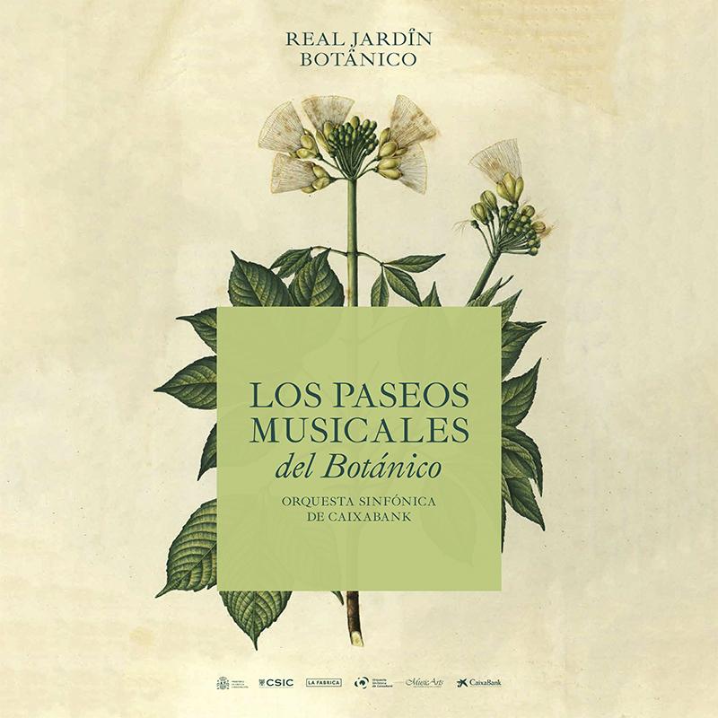 Los Paseos Musicales del Real Jardín Botánico