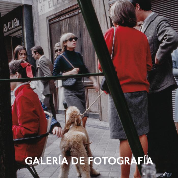 GALERÍA DE FOTOGRAFÍA